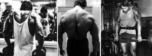 shrugs exercise