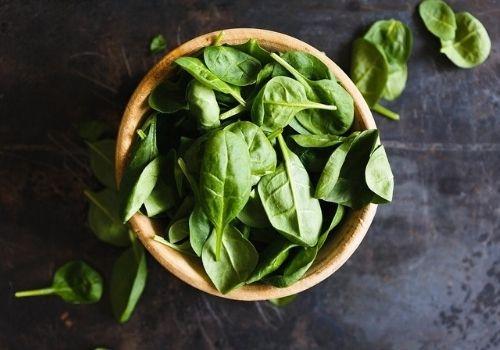 Top View, Basil, Herbs, Bowl, Closeup, Vegetarianism